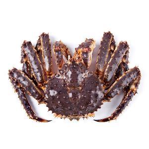 Cua King Crab Cái